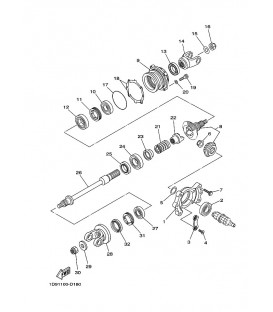 ENG DE TRANS INTERMED